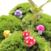 Mini pot de fleur de champignon mignon jardin résine décoration créative