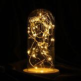 9 * 20cm Szkło Dome Bell Jar Cloche Display Drewniana podstawa z lampkami LED Lights Dekoracje