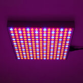 1200W LED Grow Light Impermeable Planta Lámpara Chip Phyto Growth Lámpara Espectro completo Planta Iluminación para interior Planta - Enchufe US
