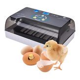 110/220V Intelligent Egg Incubator Digital Fully Automatic Hatching Incubator 12 Position