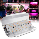 Spektrum penuh 50W 100W LED Tanaman Bunga Grow Flood Light Spotlight Lampu Indoor Terbuka AC220V