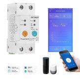 2P 63A eWelink monophasé Rail Din WIFI commutateur intelligent compteur d'énergie Protection contre les fuites à distance lecture KWh compteur wattmètre fonctionne avec Alexa Google