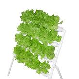 System hydroponiczny Maszyna do sadzenia balkonów 110-220V 36 otworów 4-rurowy stojak do sadzenia warzyw Rura do uprawy bezglebowej
