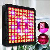 90W LED Grow Light Hydroponic Full Spectrum Interior Planta Floración de flores 85-265V
