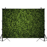 5x3ft 7x5ft 10x6.5ft Green Leaves Wall Backdrop Photography Wall Decor Background for Photo Video Wedding Birthday Party