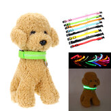 LED Adjustable Pet Collar USB Rechargeable Luminous Dog Collar Necklace Dog Supplies Outdoor Hunting