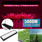5000W LED Grow Light Strip Hydroponic Full Spectrum Veg Flower Plant Lamp Panel