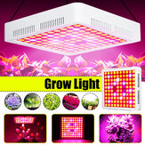 600W Full Spectrum LED Grow Light SMD3030 Growing Lámpara para hidropónico Planta + 2 ventiladores