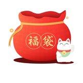 Banggood Lucky Bag - BlitzWolf Brand Product