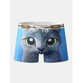 Bañador divertido persa Gato para hombre Trajes de baño Bañador con cordón transpirable