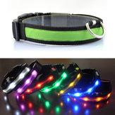 Outdoor Nylon LED Hundehalsband Nacht Sicherheit Anti-verlorene Glow Kragen Supplies