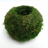 6-18cm Moss Weaved Ball Shape Flower Pot Succulent Planter Green Basket