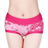 Calcinhas femininas aconchegantes Padrão cintura média quadris para cima calcinha respirável