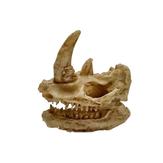 Yani Acuario Decoraciónación de ambientes exóticos Cráneo Acuario Decoraciónación de tanques de pez ornamento Tamaño pequeño