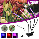 LED Plantengroei Licht 5-speed Dimmen Timing IP67 Waterdichte USB Full Spectrum Clip Plant Light
