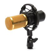 BM800 Recording Dynamic Condenser Microphone with Shock Mount