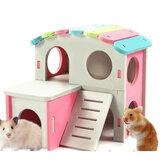 Hamster Golden Bear Bedroom Color Wooden House Big House