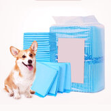 Pet Urine Pad Diaper Disposable Training Dog Urine Cleaning Pad for Pets Health Care