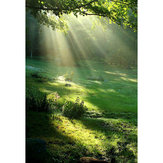 3x5ft Primavera de Vinil Floresta Sunshine Photography Backdrop Fundo Estúdio Prop