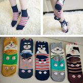 Kadın Bayanlar Kızı Güzel Sıcak Karikatür Kedi Köpek Hayvan Soyulmuş Pamuk Lady Çorap