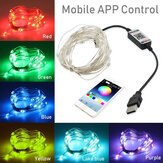 USB bluetooth String Light Mobile Phone APP Control Copper Wire Light String Christmas Decoration SmartStrips