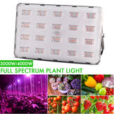 3000W 4000W LED Grow Light Hydroponic Vollspektrum Flower Bloom Indoor Outdoor Samen Pflanzlampe AC220V