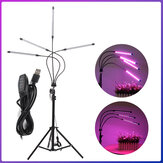 3/4 Heads LED Grow Light With Stand USB Powered Lamp Plant Growth Lighting 360°