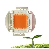 20W 30W 50W 30mil Full Spectrum LED Grow Chip DIY for Indoor Plant DC12-14V