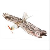 ダンスウィング趣味DW Eagle EPPミニスローチラシ1200mmウィングスパンRC飛行機キット