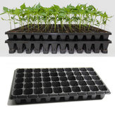 21 32 50 Holes Vegetable Flower Semillas Cultivo Tray Garden Planta Nursery Seedling Placa pot