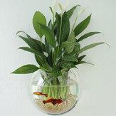 Akryl Akvarium Fish Tank Veggmontert Hengende Plant Pot Grow Vase Home Decor