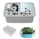 Kit de sistema hidropónico sin suelo de 220 V, cultivo aeróbico interior, cultivo de agua de 24 agujeros, Caja para plantar jardines