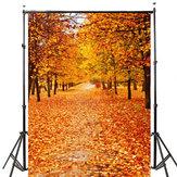 5x7ft Vinil Sonbahar Güz Fotoğraf Arka Plan Fotoğraf Stüdyosu Prop Zemin