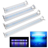 Aquarium Fish Tank EU Plug LED Light Over-Head Blue+White Lamp Plants Moon Lighting