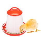 AlimentadorDeFrangoBebedorDeGarrafas Aves De Alimentação De Água Waterer Automático Beber Grelha De Pássaro