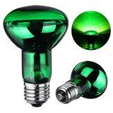E27 R63 25W 40W 50W 60W 75W 100W Lâmpada de cobra de anfíbio da noite verde Lâmpada de reptil do calor AC220-240V
