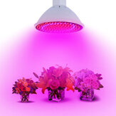 20W E27 166 Red 34 Blue LED Grow Light Растение Лампа Bulb Сад Greenhouse Растение Seeding Light