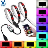 1M/3M/5M bluetooth APP 5050 RGB LED Strip Light Tape IP65 Waterproof USB Background Lamp 5V