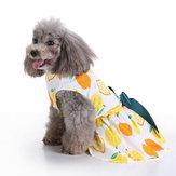 Moda pet Cachorro vestido roupas verão camisas colete vestuário confortável