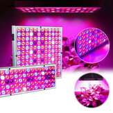 LED Grow Light Hydroponic Full Spectrum Indoor Plant Flower Growing Bloom Lamp 85-265V
