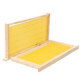 10 पीके मधुमक्खी मोम फाउंडेशन शीट्स लकड़ी मधुमक्खी पालन पाइन बीहाइव फ़्रेम 49X23.5 सेमी