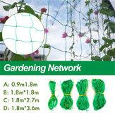 Нейлоновая решетка Растение поддерживает плоды гороховых бобов для палаток забора сетки взбираясь