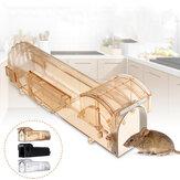 Rongeur Animal Souris Humain Piège Vivant Hamster Cage Souris Rat Contrôle Attraper Appât