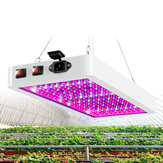 5000 / 8000W 216 / 312LED Grow Light Planta Lámpara Panel de espectro completo para flor hidropónica interior