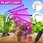 2/3/4 Heads LED Grow Light Full Spectrum Plant Lamp voor Indoor Groenten Kas met Power Adapter