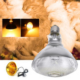 AC220V 250W Poultry Heat Incubator Lamp Infrared Pet Bulb Warm Light + Lampshade for Animals