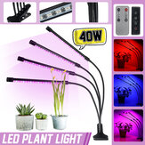 4 Head 40W Full Spectrum LED Grow Light Flexible Pot Plant Flower Vegetable Growing Lamp with Timer Function