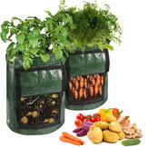 PE Garden Potato Growing Bag Plant Pot for Grow Vegetables With Drainage Hole - Green