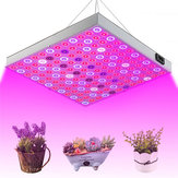 45W 144 LED-planten groeien licht Lamp Full Spectrum voor Flower Seed Greenhouse Indoor