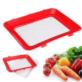Vacuum Food Preservation Tray Elastic Fresh Storage Container Healthy Kitchen
